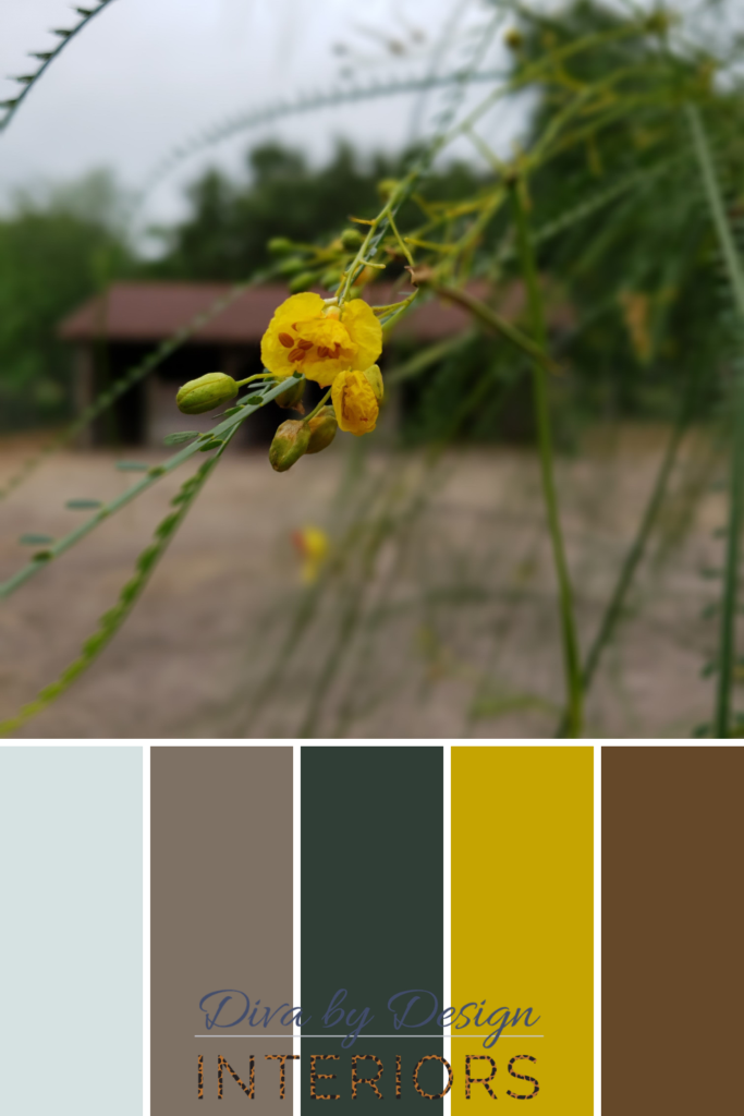 how to choose paint colors from nature diva by design brownsville interior designer 78520 78521 78523 78526 78566 78575 78578 78586 87330 78575