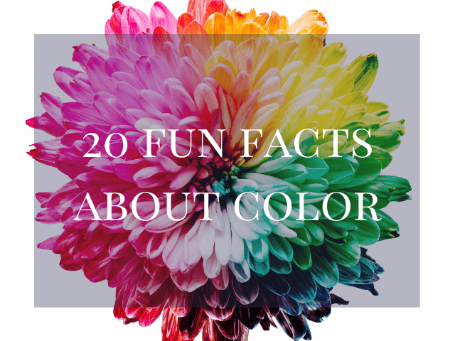 20 FUN FACTS ABOUT COLOR
